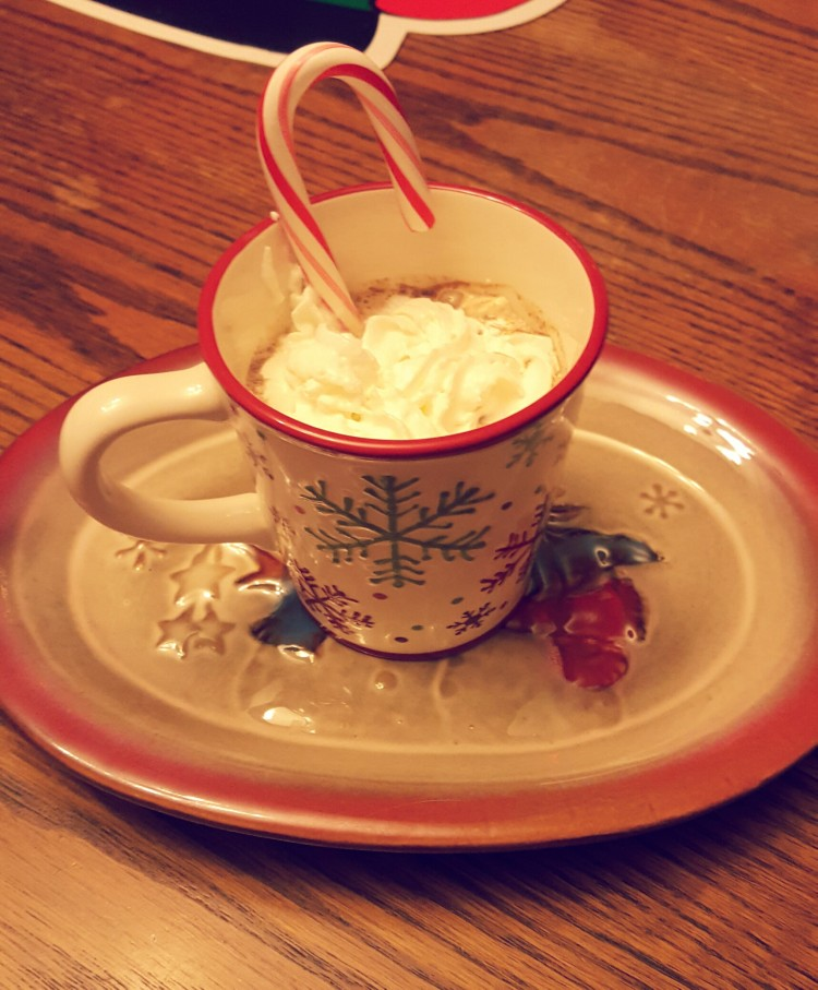 This homemade peppermint hot chocolate was just what I needed on a snowy Saturday evening.