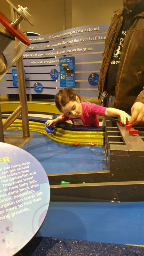 The interactive children's area at the National Mississippi River Museum and Aquarium packs in the fun while teaching kids about dams, rain, the local wildlife and so much more!